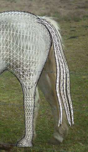 Seamless - Page 4 Horse_tail_position